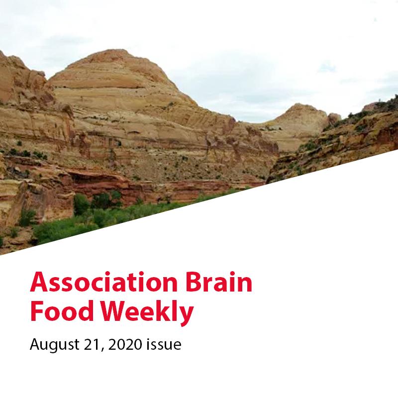 https://ricochetadvice.com/wp-content/uploads/2020/10/2020-08-21-Association-Brain-Food.png