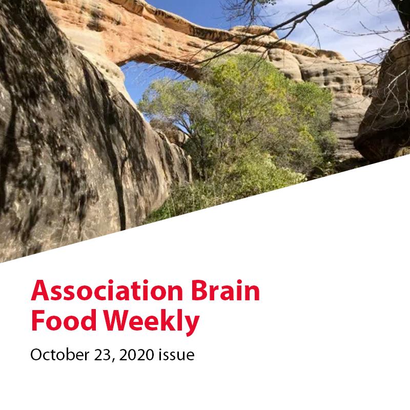https://ricochetadvice.com/wp-content/uploads/2020/10/2020-10-23-Association-Brain-Food.png